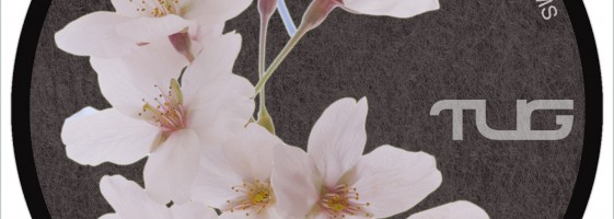 Munnibrotherz - Blossoms (Yooj's B-City Remix)