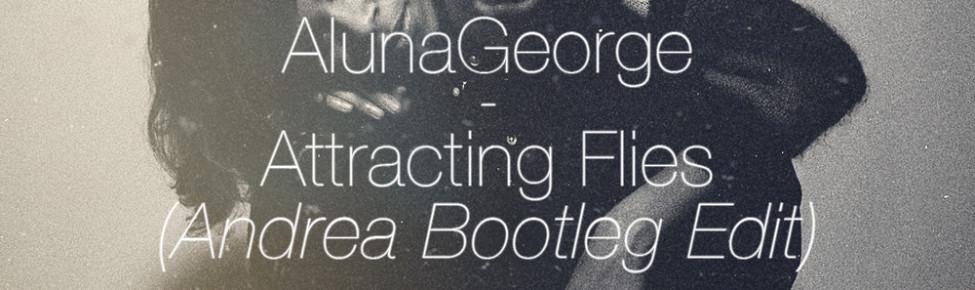 AlunaGeorge - Attracting Flies (Andrea Bootleg Edit)