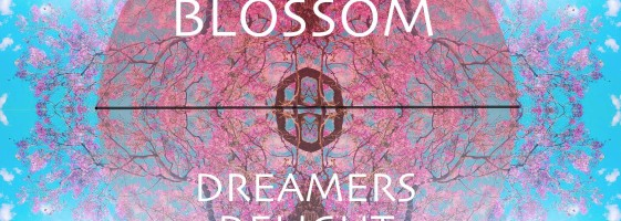 Dreamers Delight - Blossom